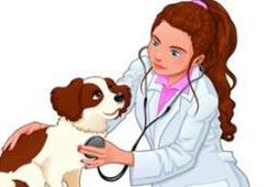 港澳臺居民參加全國執業獸醫資格考試及執業管理規定