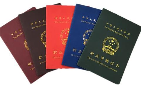 537名臺胞去年在閩獲職業資格證書