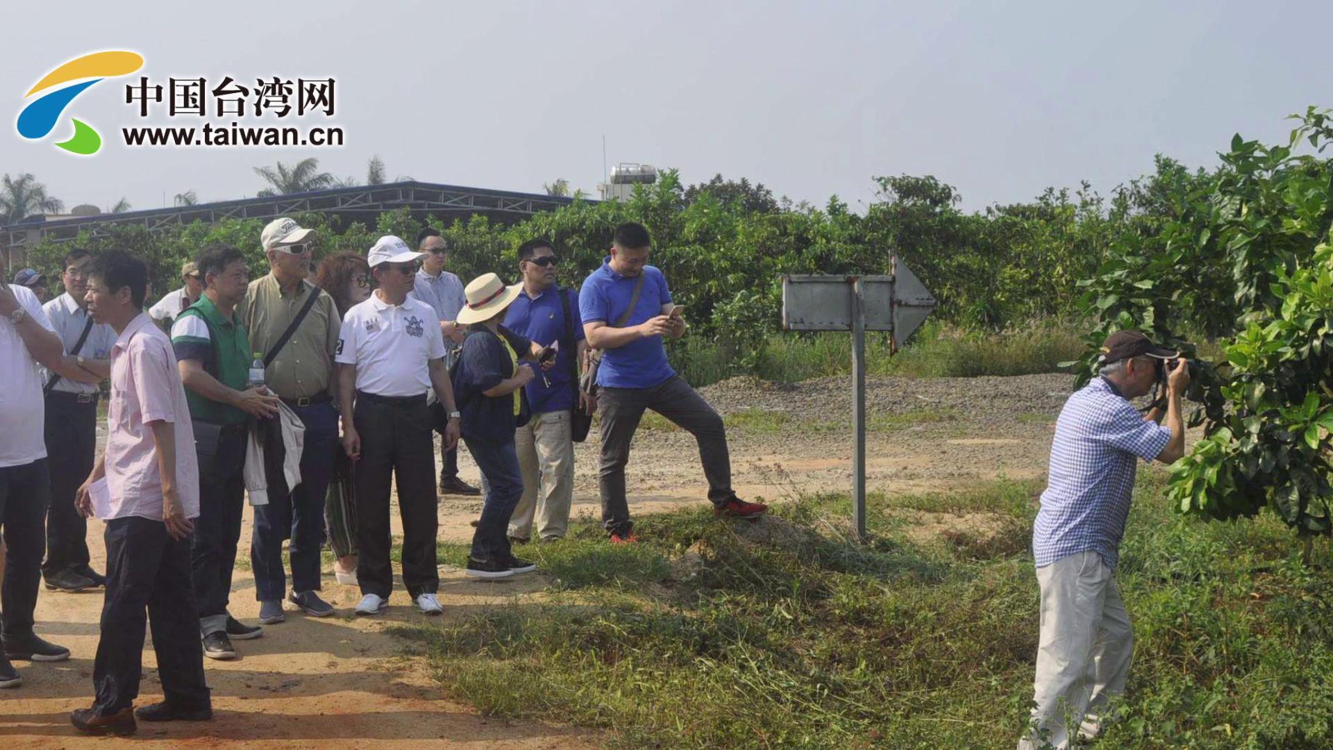 瓊臺農業融合發展圖片