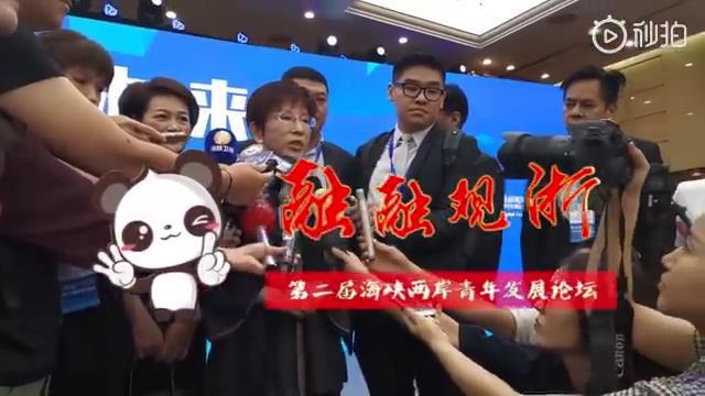 前國民黨主席洪秀柱:未來屬於青年,兩岸青年必須來往圖片