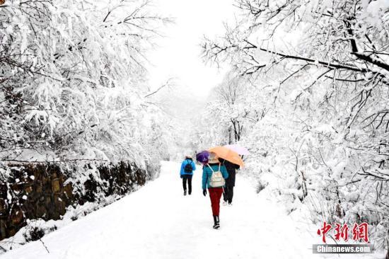 受寒潮影響,2017年3月12日,甘肅崆峒山景區迎來一場鵝毛大雪。徐振華 攝