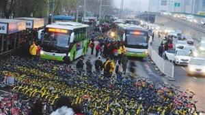 北京市交通委:共用單車與普通車停放要求一致.jpg
