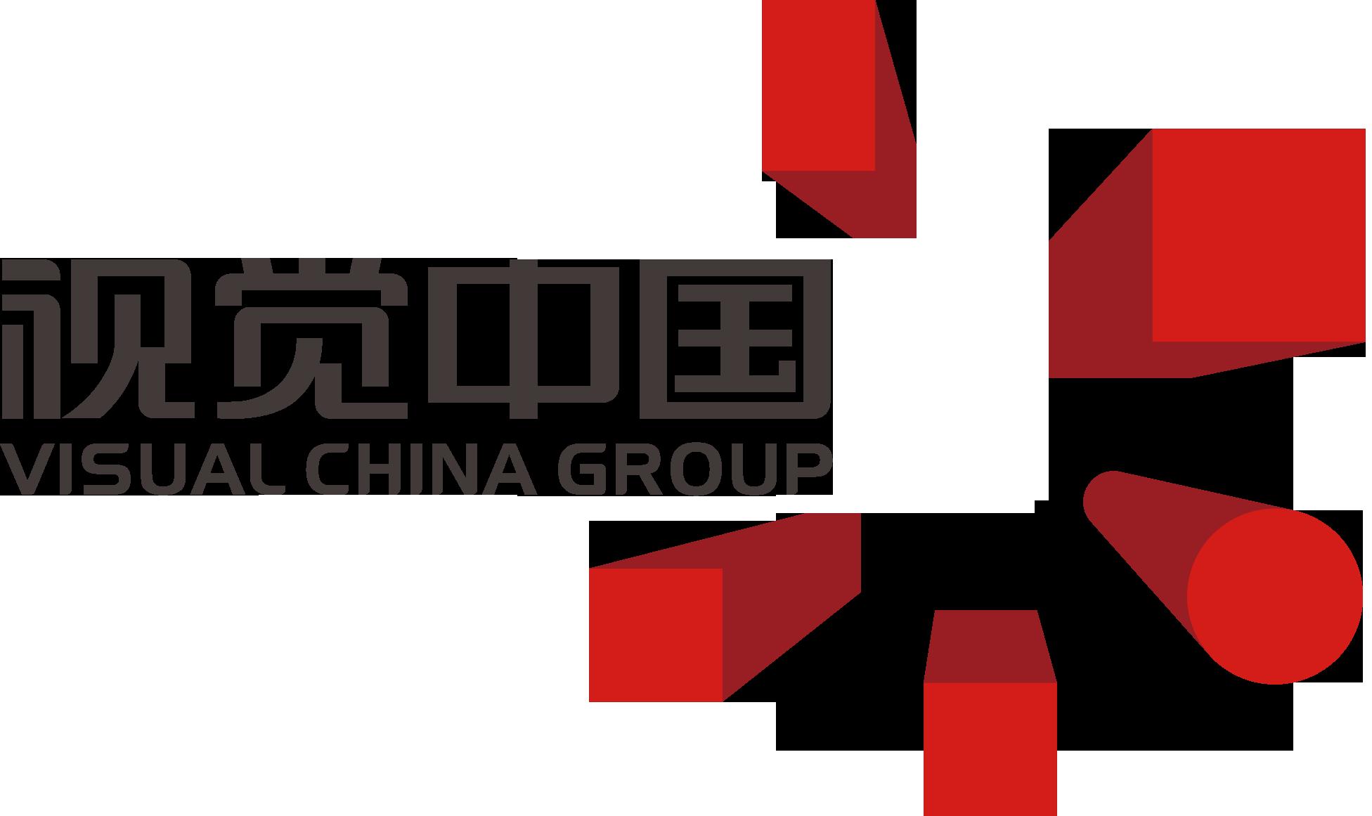 視覺中國logo.png