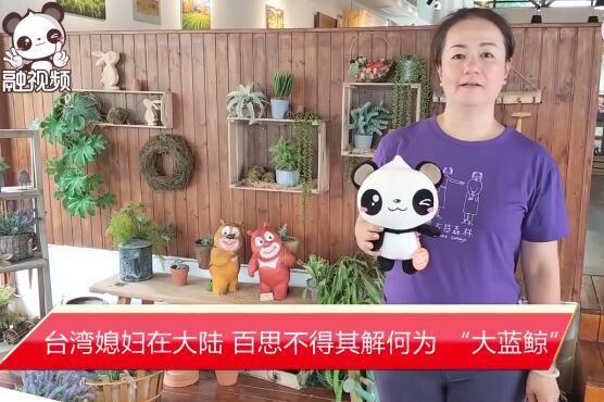 """臺灣媳婦在大陸,百思不得其解何為 """"大藍鯨"""""""
