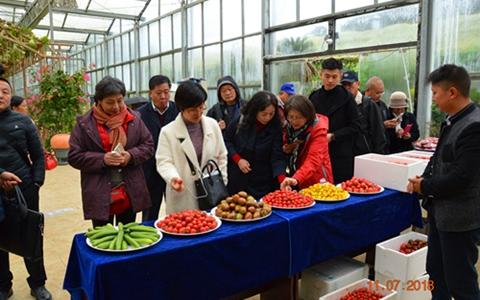 第五屆築臺兩地都市現代農業交流活動圓滿舉行