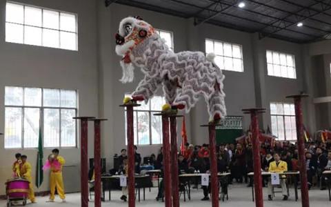 臺灣龍獅團協會參加2019年中國東盟(富川)國際龍獅爭霸賽