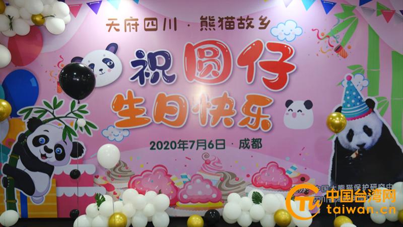 """大熊貓""""圓仔"""".png"""