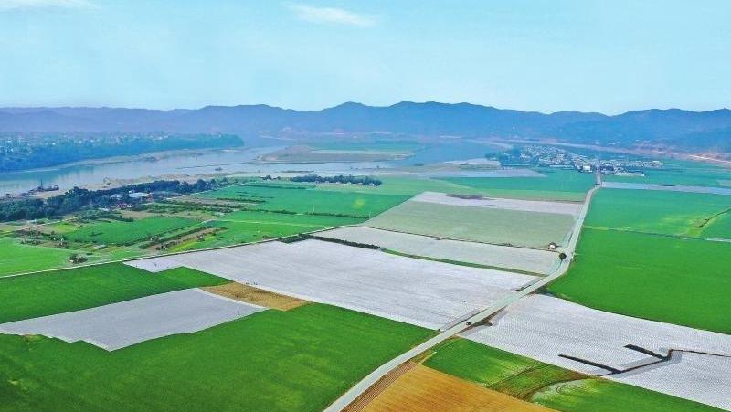 2020年四川糧食産量突破700億斤