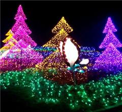 臺灣北海岸展繽紛聖誕燈飾 打造冬日秘密花園