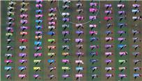 山西千余民眾集體練習瑜伽迎接國際瑜伽日