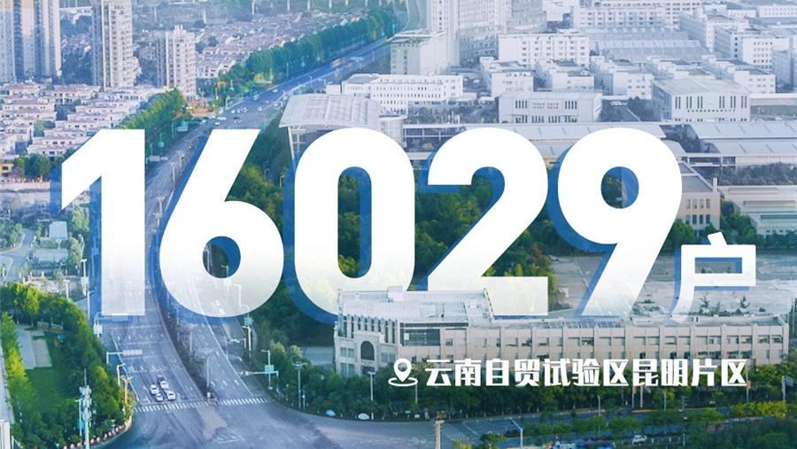 """""""數""""説雲南自貿試驗區2020年"""