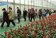 廣西農業精品展為南寧農業臺企搭起展示舞臺