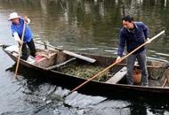 長江是我家—來自長江經濟帶基層的聲音