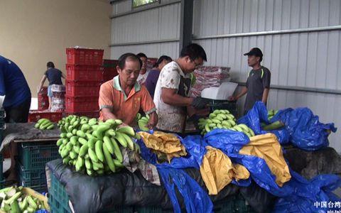 副本香蕉.jpg