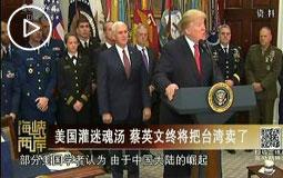 美國灌迷魂湯 蔡英文終將把臺灣賣了