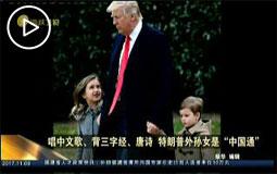 """唱中文歌、背三字經、唐詩 特朗普外孫女是""""中國通"""""""