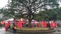 228公園被插滿五星紅旗