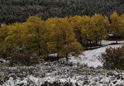 國慶節後期再遇雨雪降溫